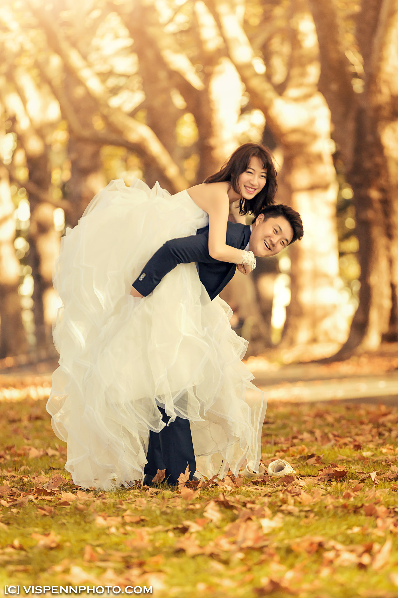 PRE WEDDING Photography Melbourne 5D1 2898