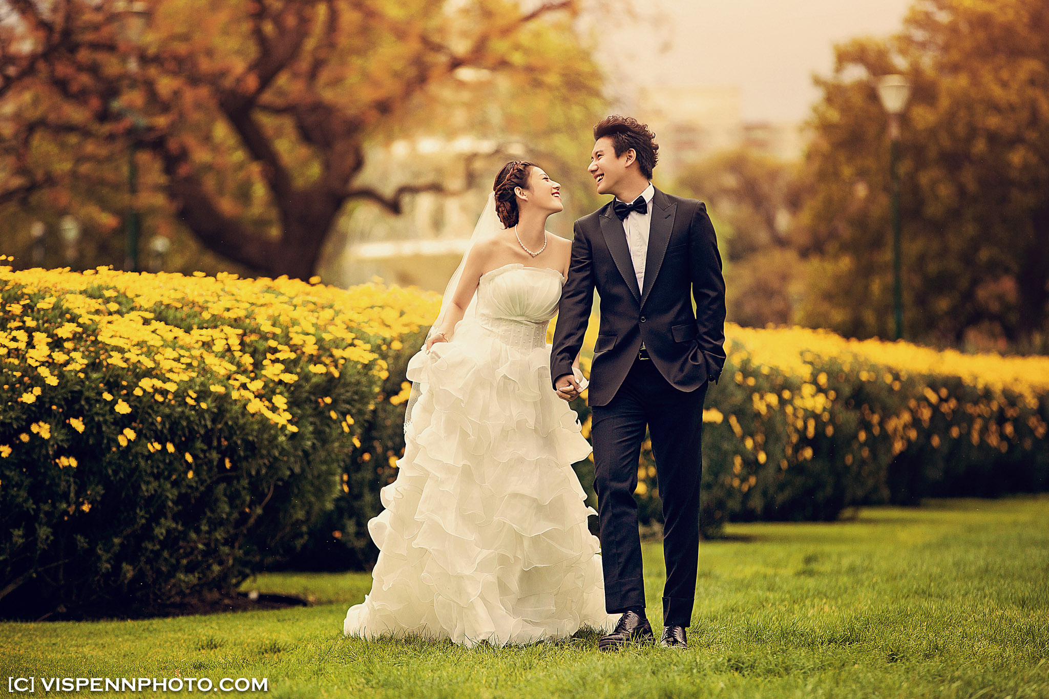 PRE WEDDING Photography Melbourne 5D3 3297