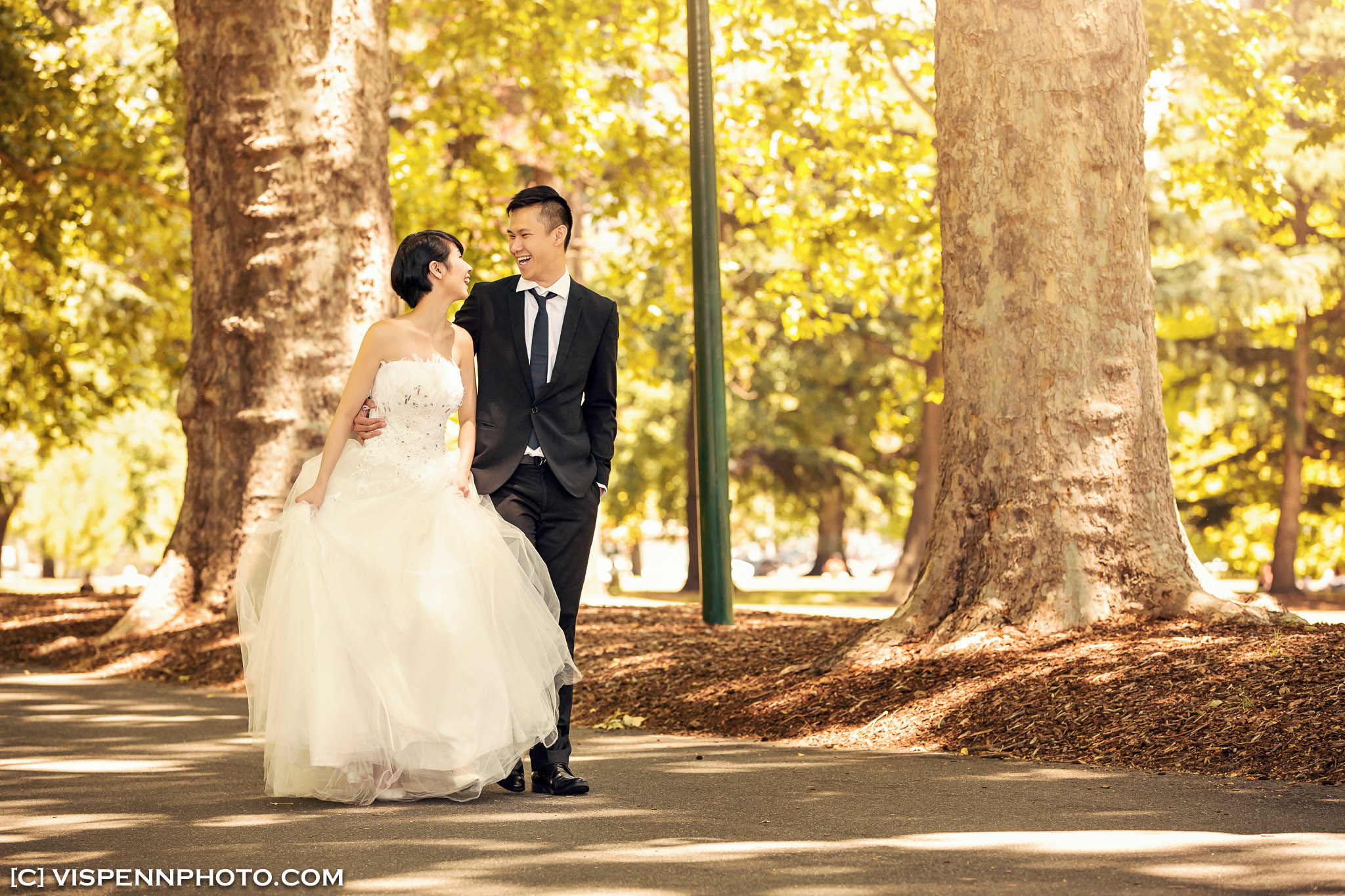 PRE WEDDING Photography Melbourne Ivy PreWedding 1423