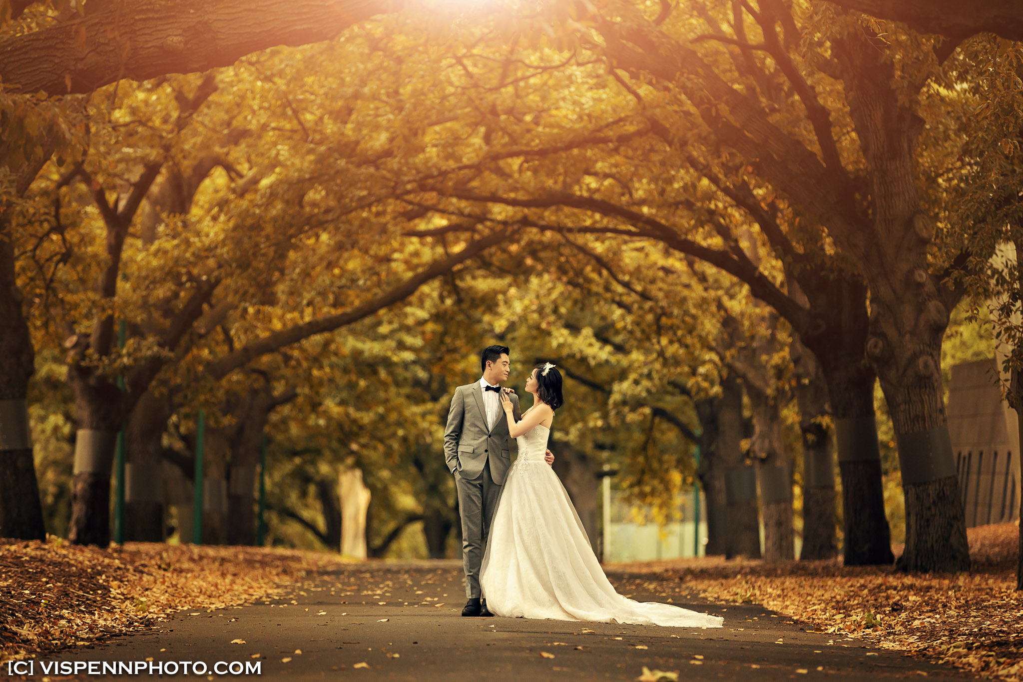 PRE WEDDING Photography Melbourne Pauline 2163