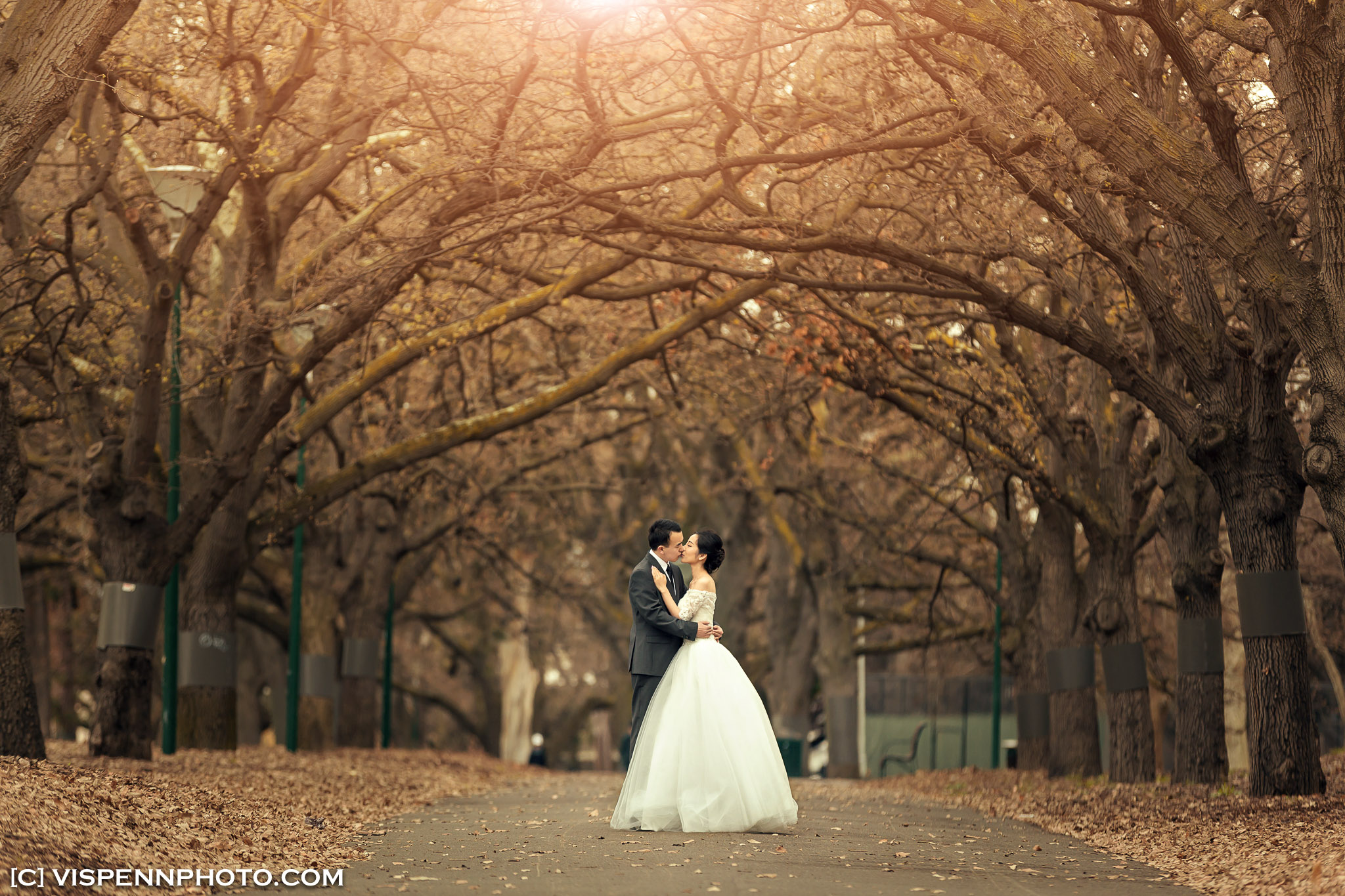 PRE WEDDING Photography Melbourne ZHPENN XXD 0055