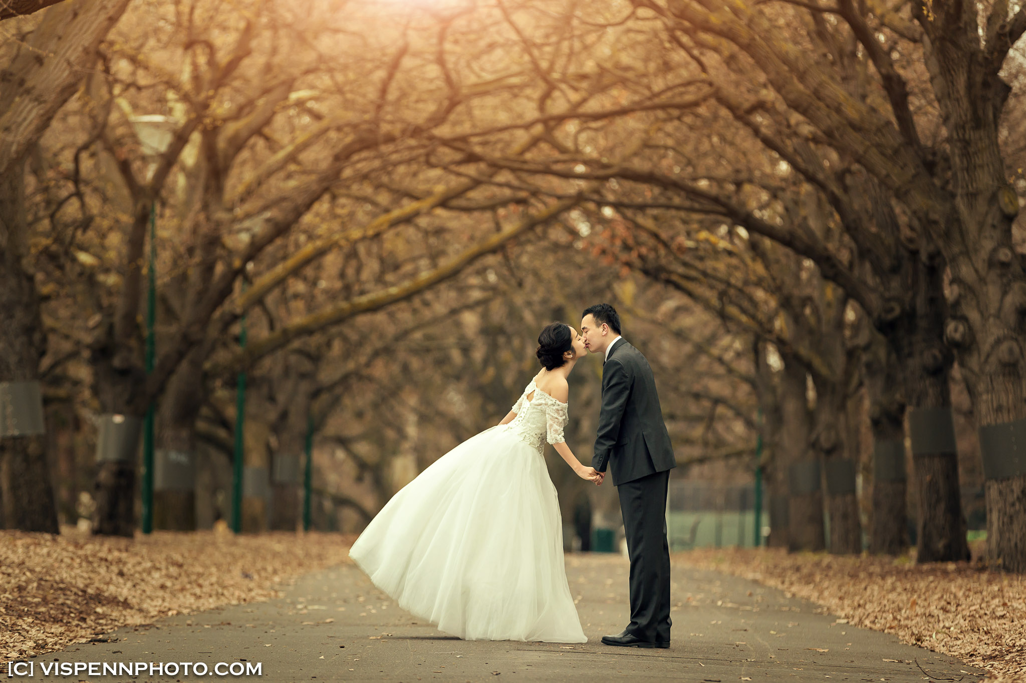 PRE WEDDING Photography Melbourne ZHPENN XXD 0476