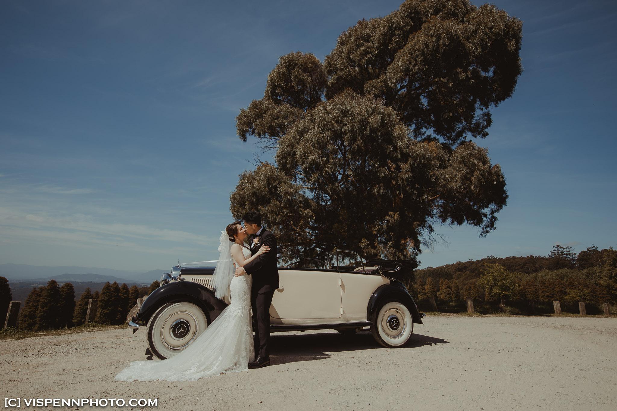 WEDDING DAY Photography Melbourne ElitaPB 05865 3P 5D4 ZHPENN