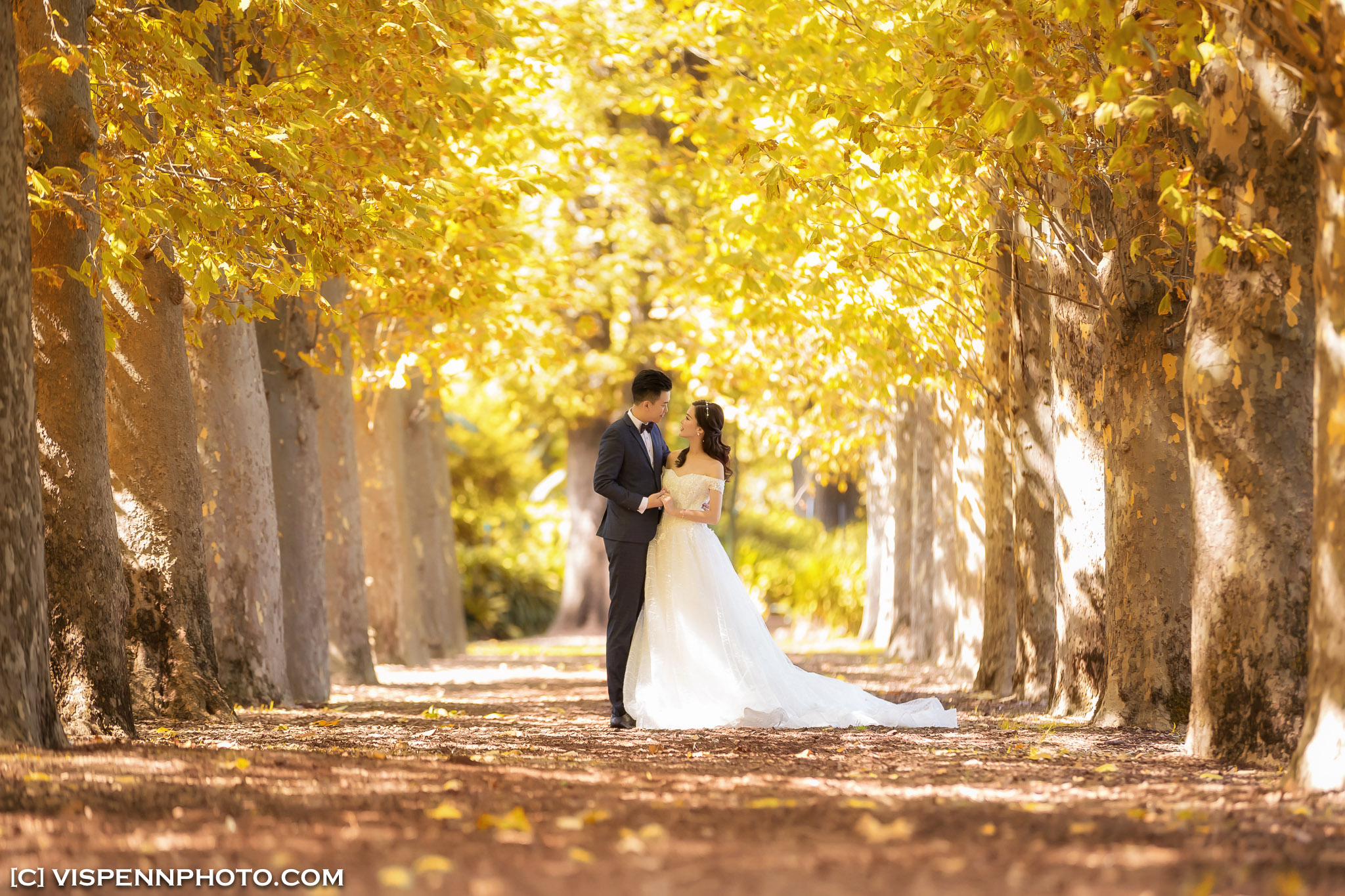 PRE WEDDING Photography Melbourne AndyCHEN 1360 1DX ZHPENN