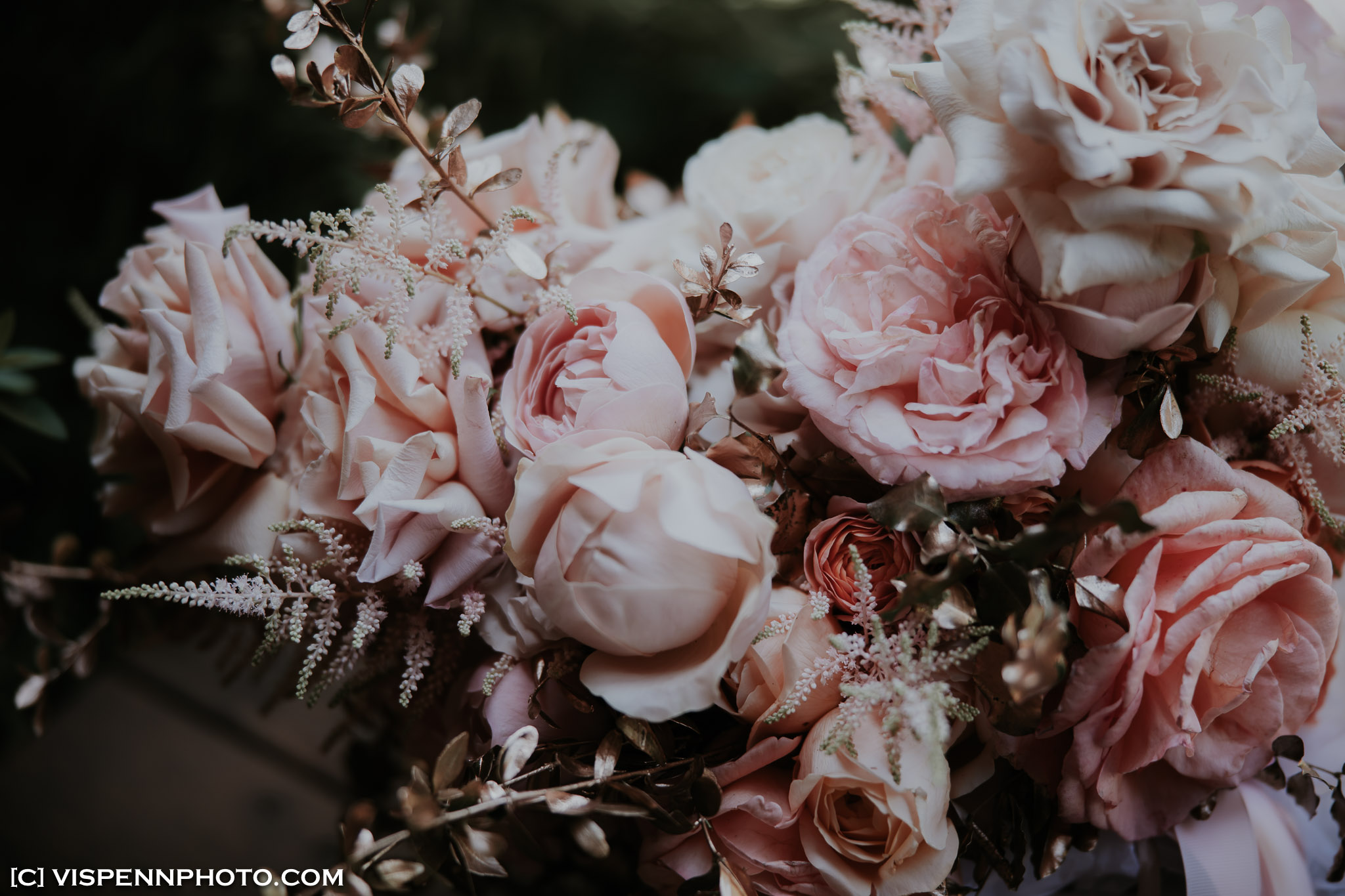 WEDDING DAY Photography Melbourne ElitaPB 03923 1P EOSR ZHPENN