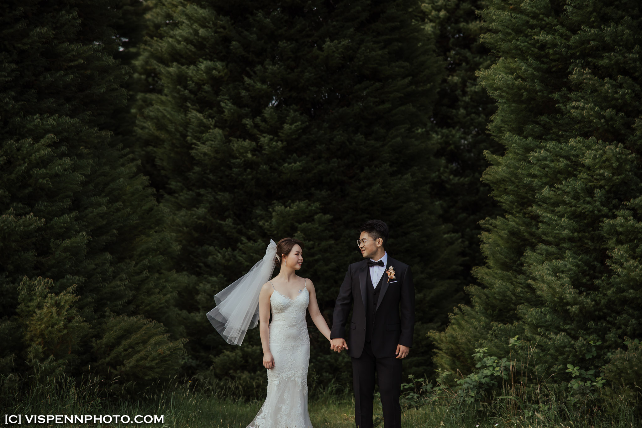 WEDDING DAY Photography Melbourne ElitaPB 06674 1P EOSR ZHPENN